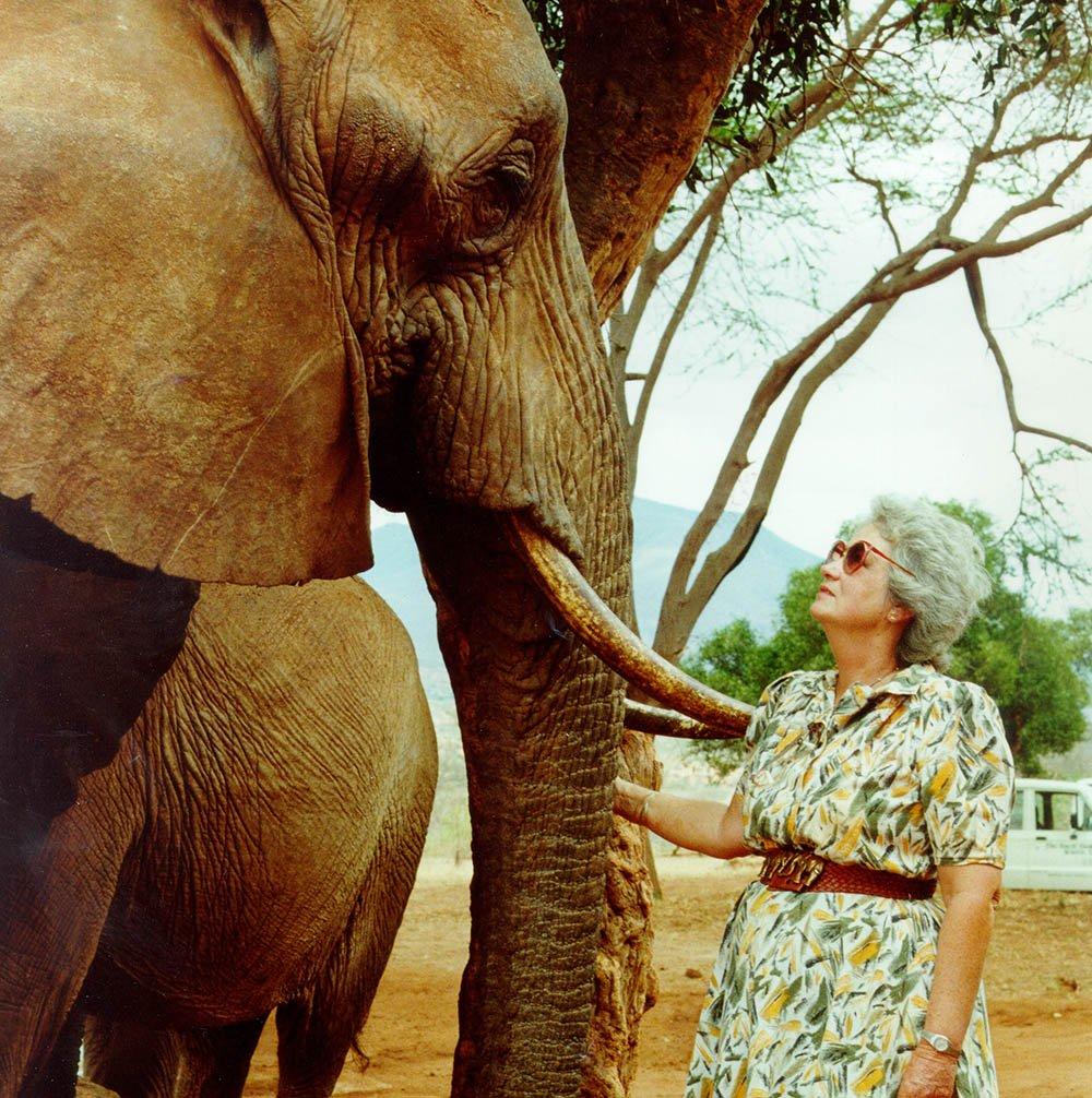 In Loving Memory of Dame Daphne Sheldrick